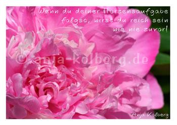 Postkarte 06016