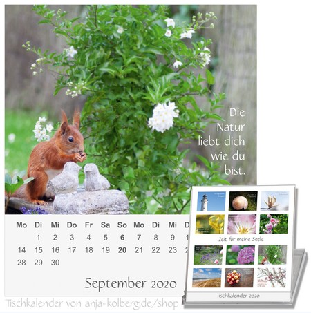 Tischkalender Zeit für meine Seele 2020