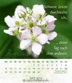 Tischkalender 'Ich bin gut zu mir' Juni 2014