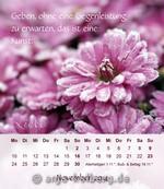 Tischkalender 2014