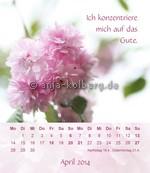 Tischkalender 2014: Kurze Meditationen