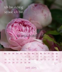 Juni 2013 - Tischkalender Ich gehe meinen Weg
