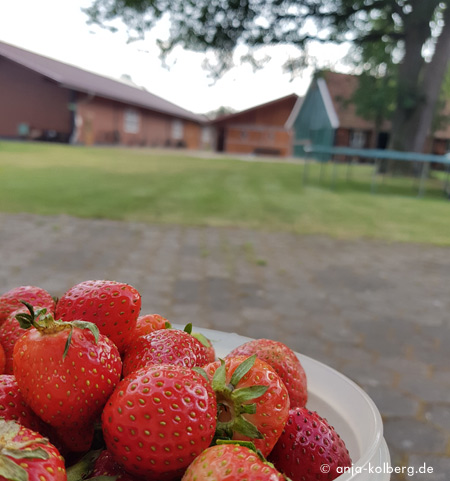 Unterkunft auf einem Bauernhof