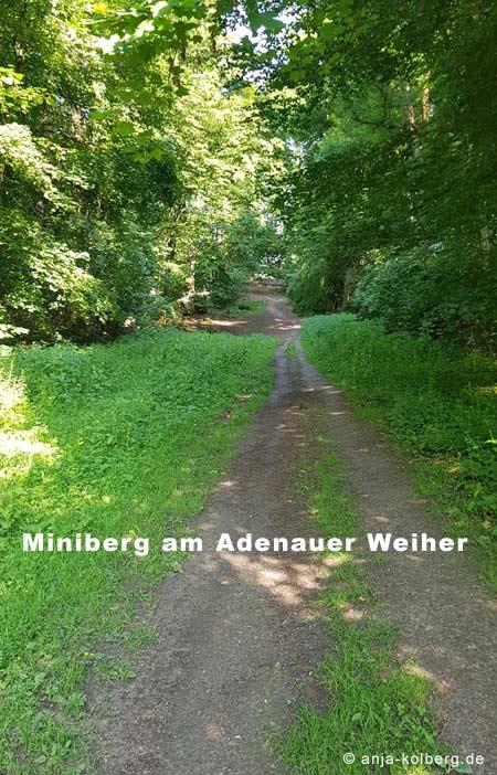 Miniberg am Adenauer Weiher Köln