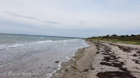 Svallerup Strand