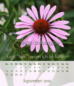 Tischkalender 2010 - vor Weihnachten gibt es den neuen Kalender 2011 hier zu kaufen