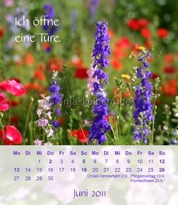 Tischkalender 2011