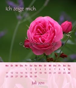 Kick zum Tischkalender