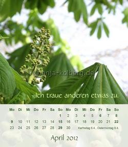 Tischkalender 2012