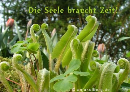 http://www.anjakolberg.de/ecards